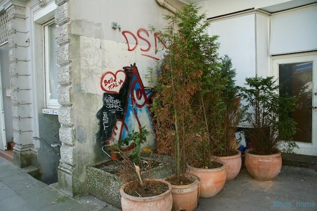 DSC_3706
