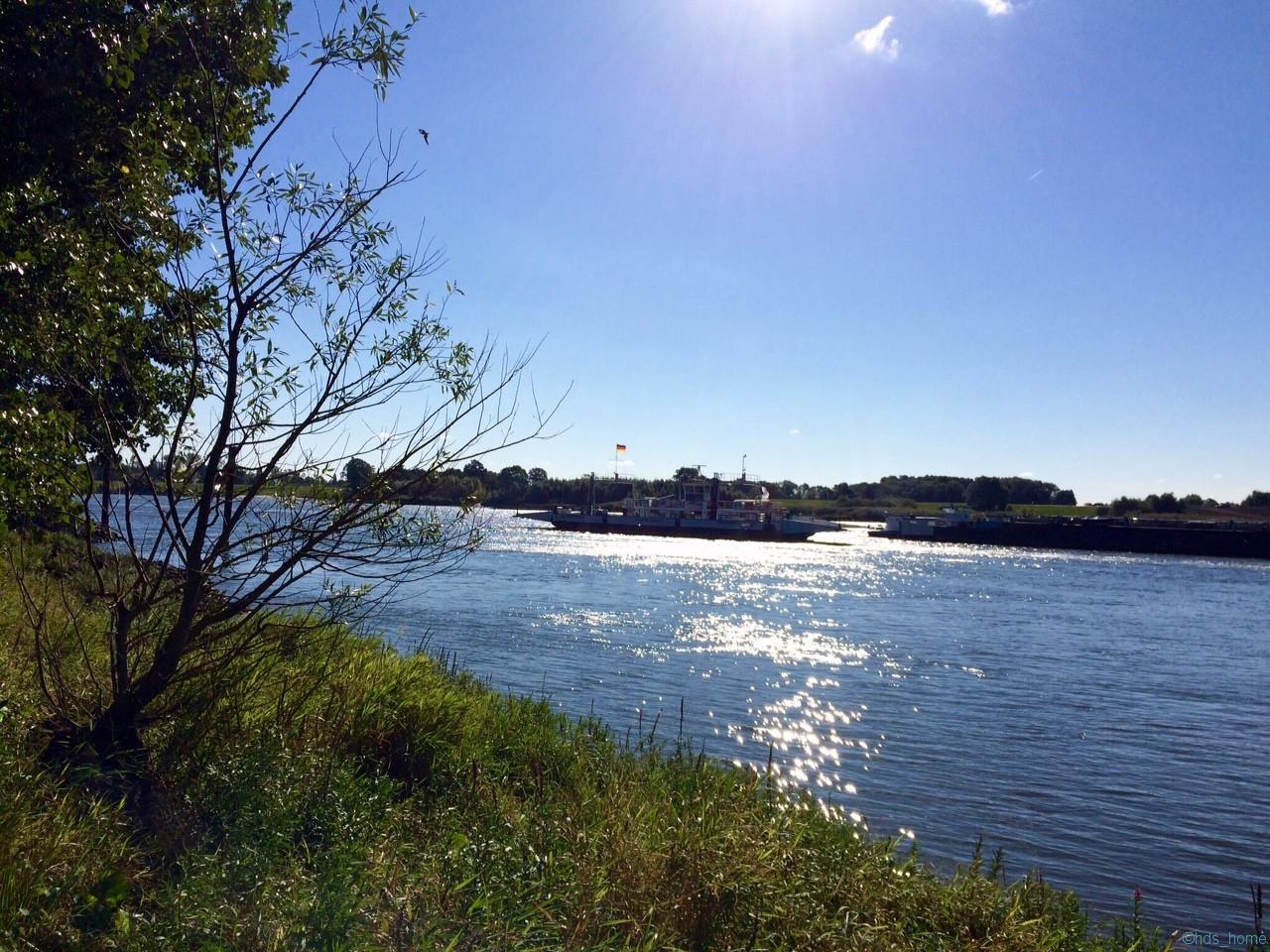 Septembersonntagmorgen an der Elbe